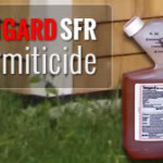 Tengard SFR – Product Review